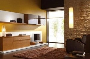 Techos, paredes, suelos y ventanas
