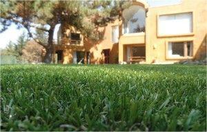 Mantener jardín sin esfuerzo