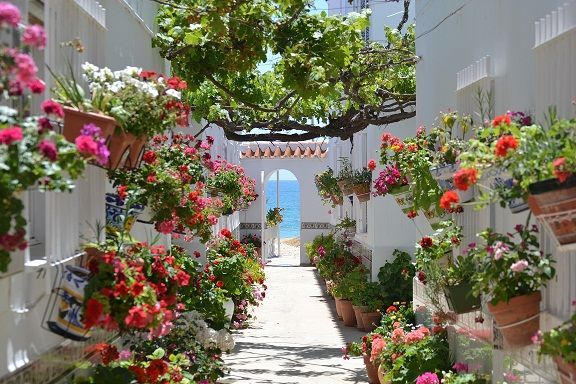 Vacaciones con estilo en el Sur: Tu apartamento en Sevilla