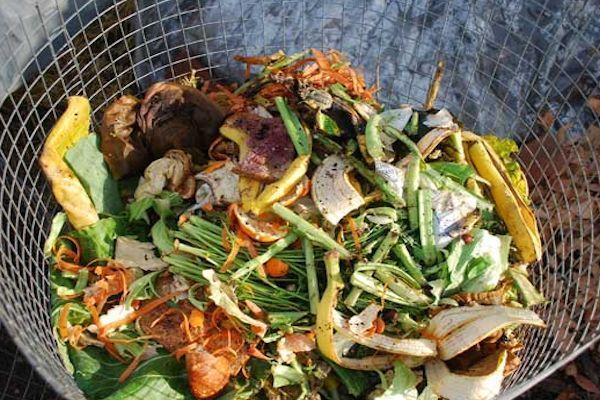 Cómo Elaborar Tu Propio Compost