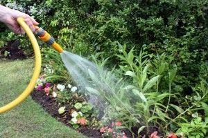 Tips Para Elegir Mangueras Para El Jardín