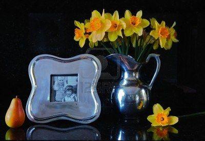 Decorar el Hogar con Narcisos