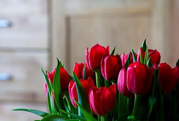 decorar-tu-casa-con-flores