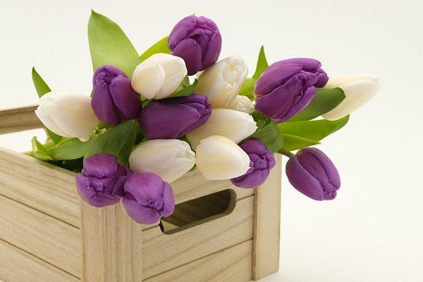 Ideas para Decorar tu Casa con Flores